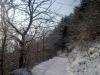 Weg zur Riede Kaiserberg