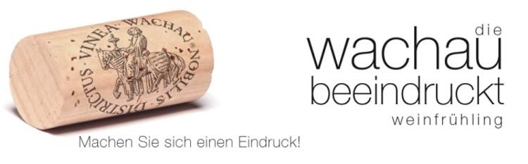 Wachauer Weinfrühling