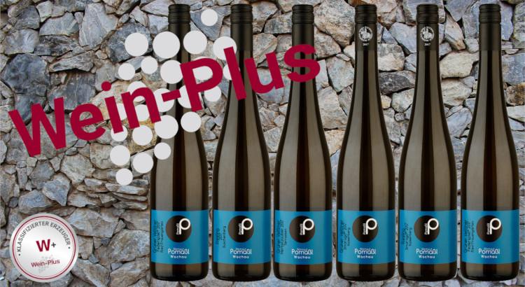 Wein-Plus