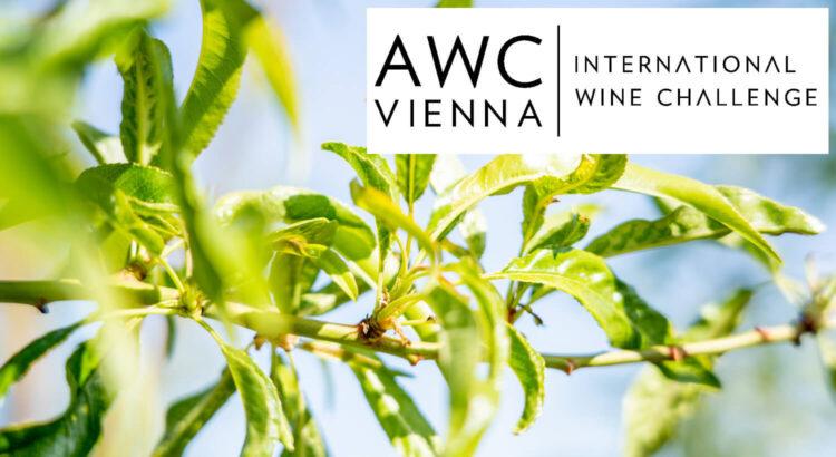 AWC-Vienna